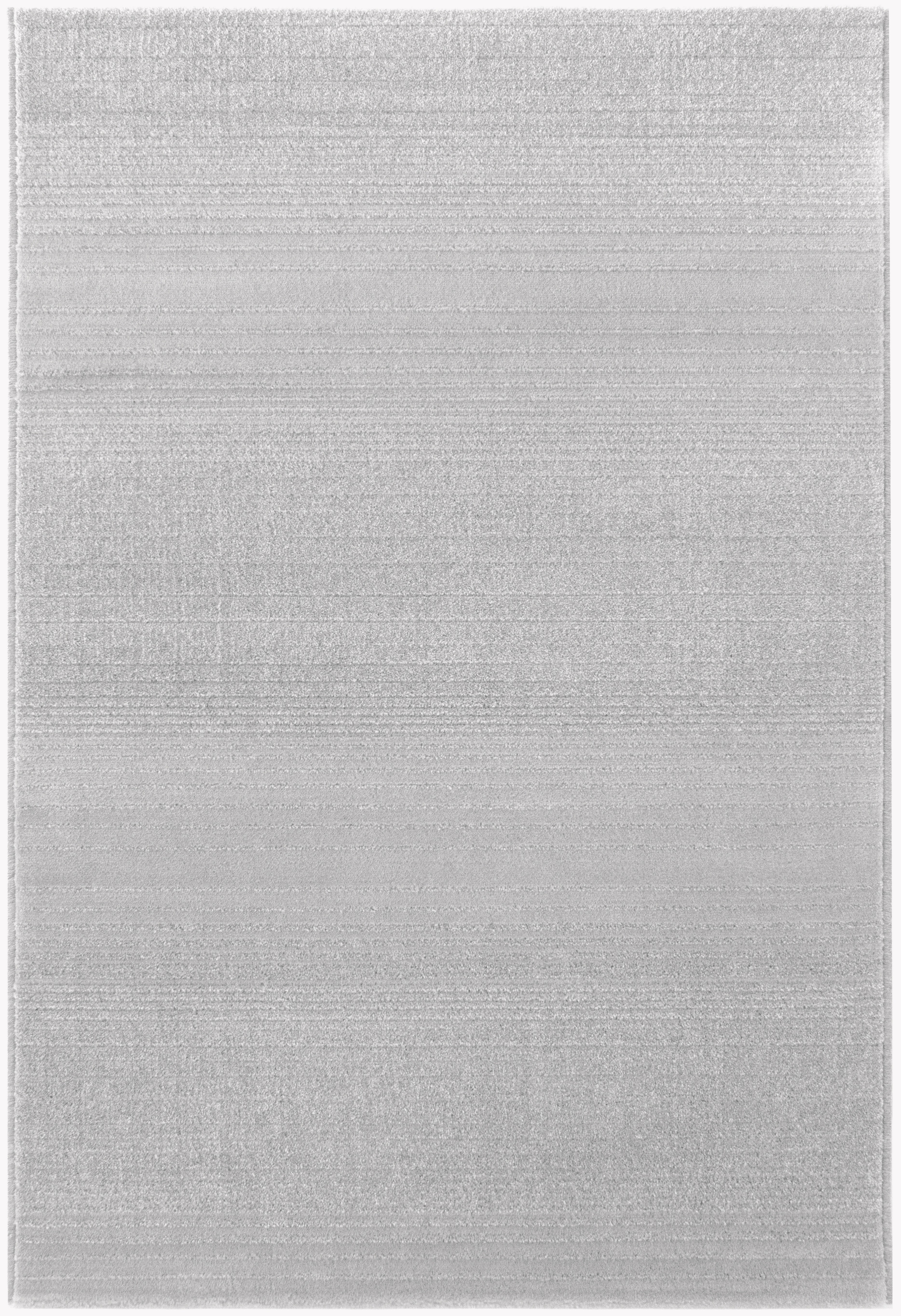 Tapis uni gris clair longues m ches grande salon d for Tapis salon clair