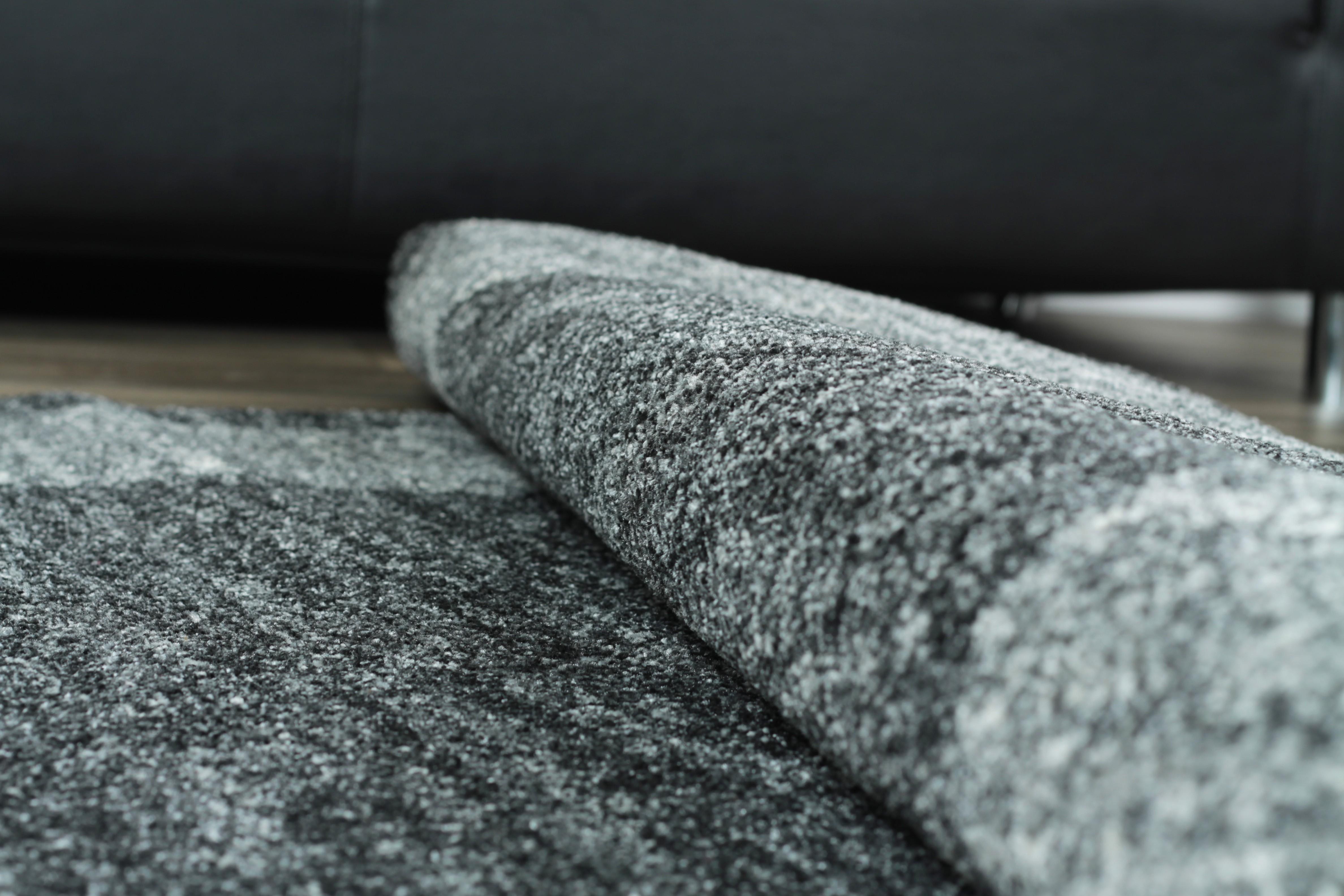 Tapis en gris foncé look contemporain grande salon d'entrée ...