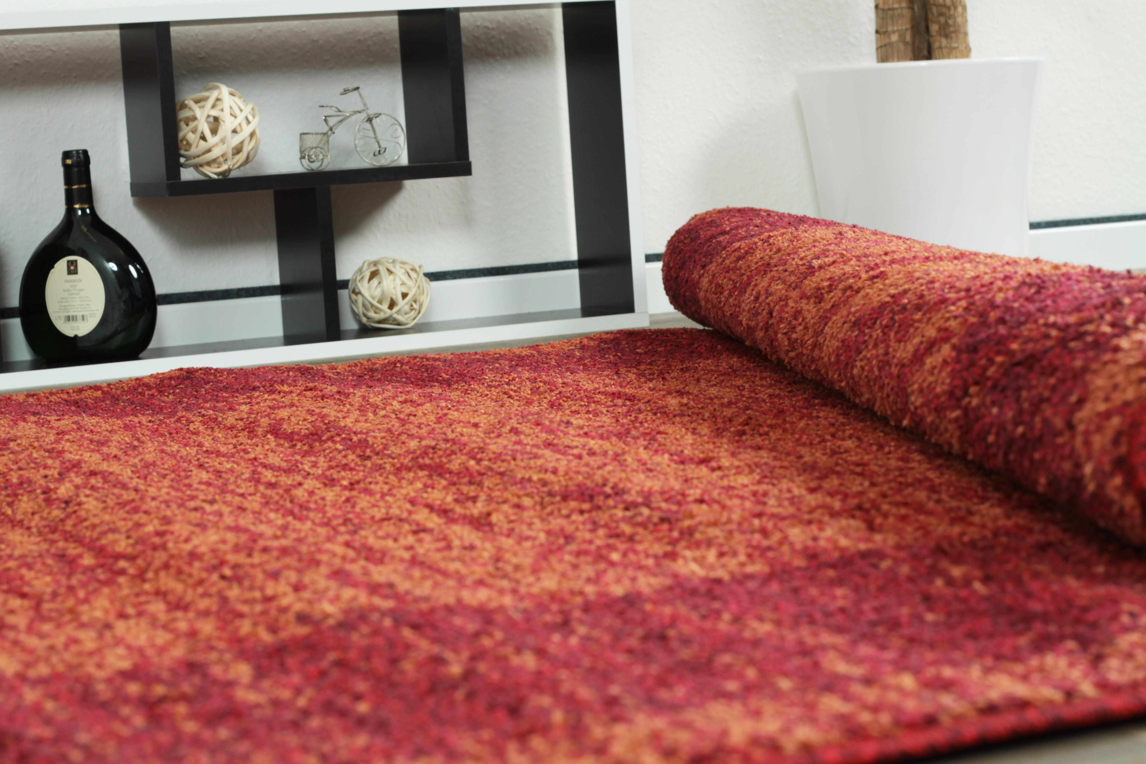 tapis en rouge look contemporain grande salon d 39 entr e couloir loures. Black Bedroom Furniture Sets. Home Design Ideas